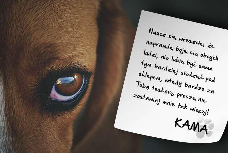 Kama-naucz sie