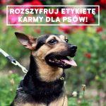 Rozszyfruj etykietę karmy dla psów!