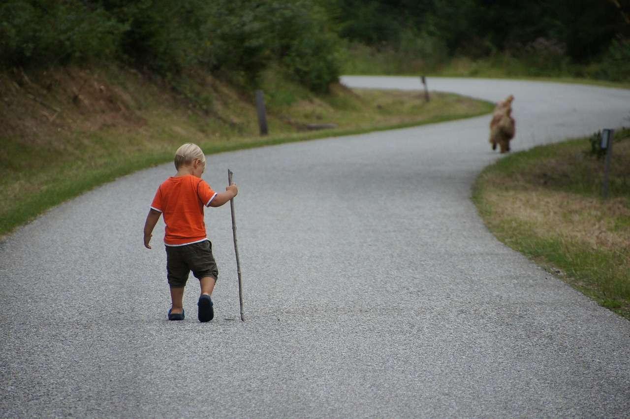 pies z dzieckiem na spacerze