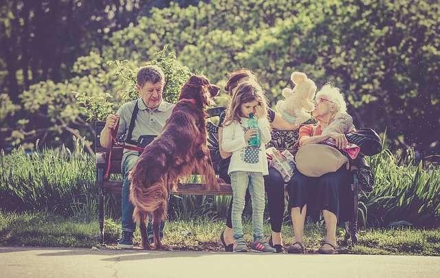 rodzina i pies