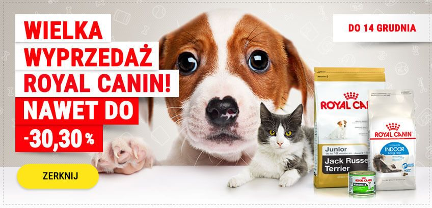 Wielka wyprzedaż produktów marki Royal Canin
