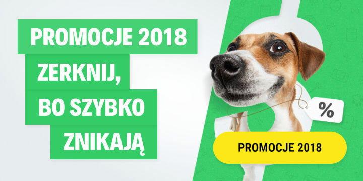 Promocje 2018