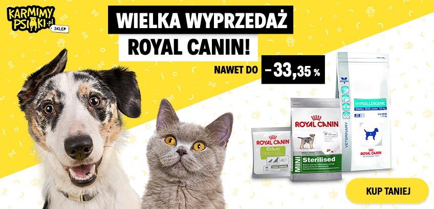 Wielka wyprzedaż produktów marki Royal Canin!