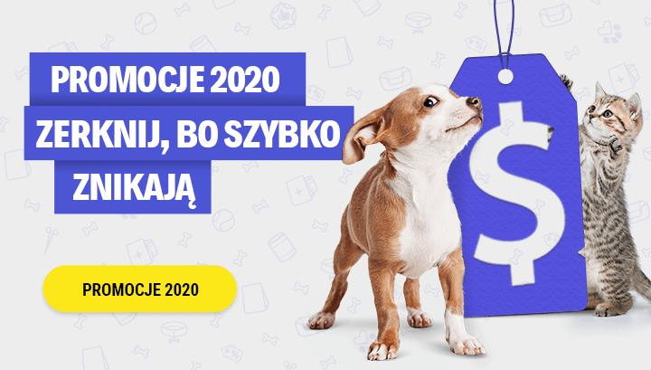 Promocje 2020