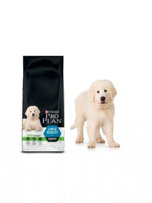 Purina Pro Plan Large Robust Puppy Kurczak 12kg