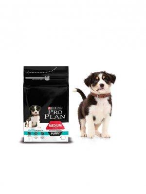 Purina Pro Plan Medium Puppy Sensitive Digestion Kurczak 1,5kg