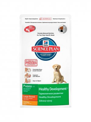 Hill's Science Plan Puppy Healthy Development Large Kurczak 11kg