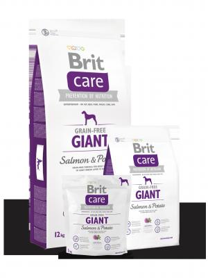 Brit Care Adult Giant Łosoś i Ziemniaki 1 kg - Bez zbóż