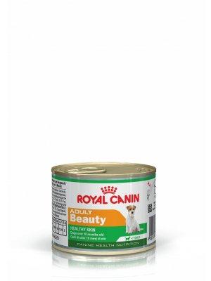 ROYAL CANIN Adult Beauty 195g karma mokra dla psów dorosłych, ras małych, wrażliwa skóra
