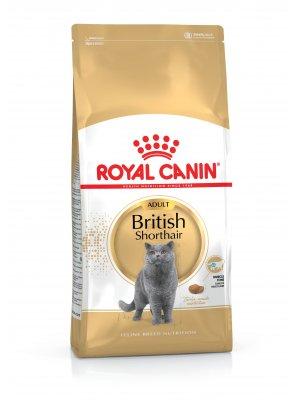 ROYAL CANIN British Shorthair 4kg karma sucha dla kotów dorosłych rasy brytyjski krótkowłosy