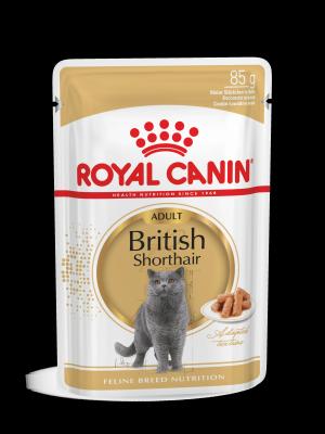 ROYAL CANIN British Shorthair 85g karma mokra w sosie dla kotów dorosłych rasy brytyjski krótkowłosy