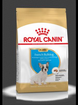 ROYAL CANIN French Bulldog Puppy 10kg karma sucha dla szczeniąt ras Buldog Francuski