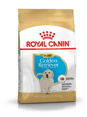 ROYAL CANIN Golden Retriever Puppy 12kg karma sucha dla szczeniąt rasy Golden Retriever