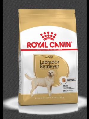 ROYAL CANIN Labrador Retriever Adult 12kg karma sucha dla psów dorosłych rasy labrador retriever