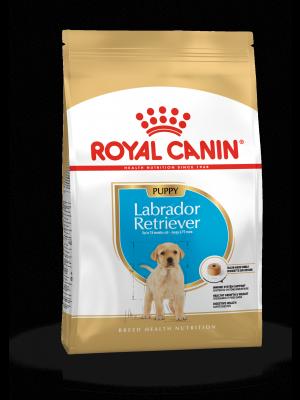 ROYAL CANIN Labrador Retriever Puppy 12kg karma sucha dla szczeniąt rasy Labrador Retriever