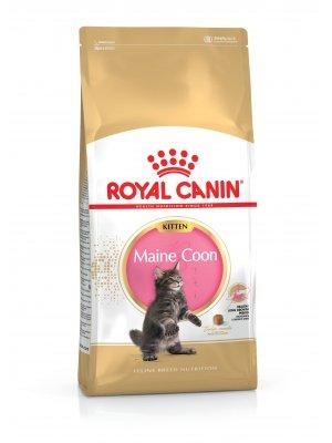 ROYAL CANIN Maine Coon Kitten 2kg karma sucha dla kociąt rasy maine coon