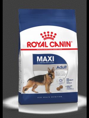 ROYAL CANIN Maxi Adult 10kg karma sucha dla psów dorosłych, do 5 roku życia, ras dużych