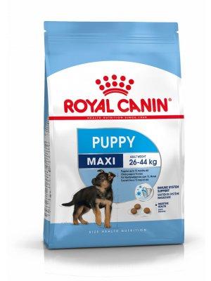 ROYAL CANIN Maxi Puppy 15kg karma sucha dla szczeniąt od 2 do 15 miesiąca życia, ras dużych