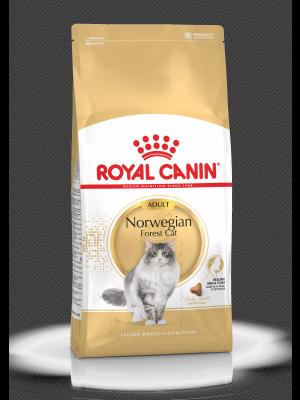 ROYAL CANIN Norvegian Forest Cat Adult 2kg karma sucha dla kotów dorosłych rasy norweski leśny