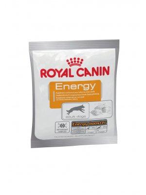 ROYAL CANIN Nutritional Supplement Energy 50g zdrowy przysmak dla psów dorosłych, aktywnych