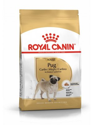 ROYAL CANIN Pug Adult 1,5kg karma sucha dla psów dorosłych rasy mops