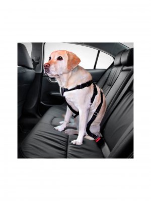 Trixie Szelki Samochodowe Dla Psa XL