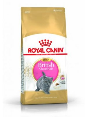 ROYAL CANIN BRITISH SHORTHAIR KITTEN 10 kg