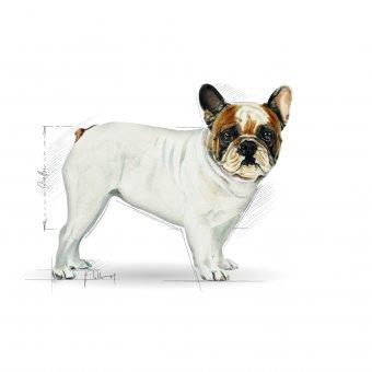 Royal Canin French Bulldog Adult 3kg