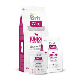 Brit Care Junior Large Breed Jagnięcina z Ryżem 3 kg