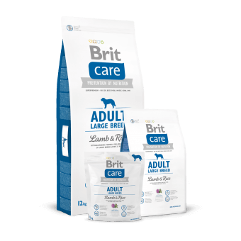 Brit Care Adult Large Breed Jagnięcina z Ryżem 12 kg