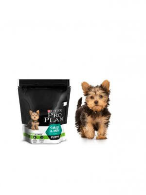 Purina Pro Plan Small & Mini Puppy Kurczak 700g