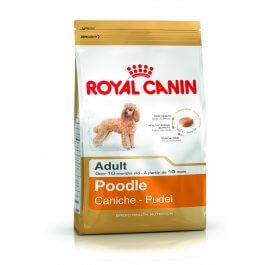 ROYAL CANIN Poodle Adult 1,5kg karma sucha dla psów dorosłych rasy pudel miniaturowy ##CHARYTATYWNY SKLEP ## 100% ZYSKU SKLEPU NA POMOC ZWIERZAKOM :)