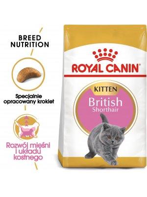 ROYAL CANIN British Shorthair Kitten 0,4kg karma sucha dla kociąt rasy brytyjski krótkowłosy