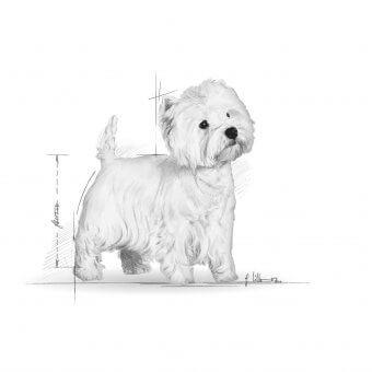 Royal Canin West Highland White Terrier Adult 0,5kg