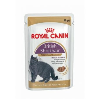 ROYAL CANIN SHORTHAIR WET 85g