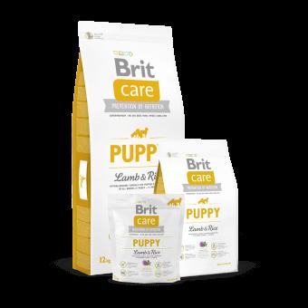 Brit Care Puppy All Breed Jagnięcina z Ryżem 12 kg