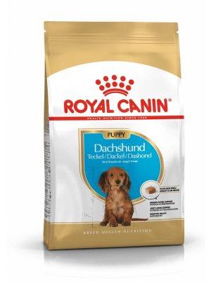ROYAL CANIN Dachshund Puppy 1,5kg karma sucha dla szczeniąt rasy Dachshund