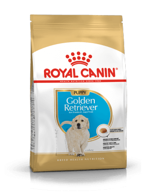 ROYAL CANIN Golden Retriever Puppy 3kg karma sucha dla szczeniąt rasy Golden Retriever