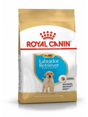 ROYAL CANIN Labrador Retriever Puppy 1kg karma sucha dla szczeniąt rasy Labrador Retriever