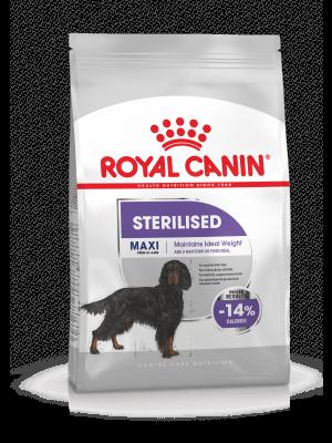 Royal Canin Maxi Sterilised 3kg karma sucha dla psów dorosłych, ras dużych, sterylizowanych